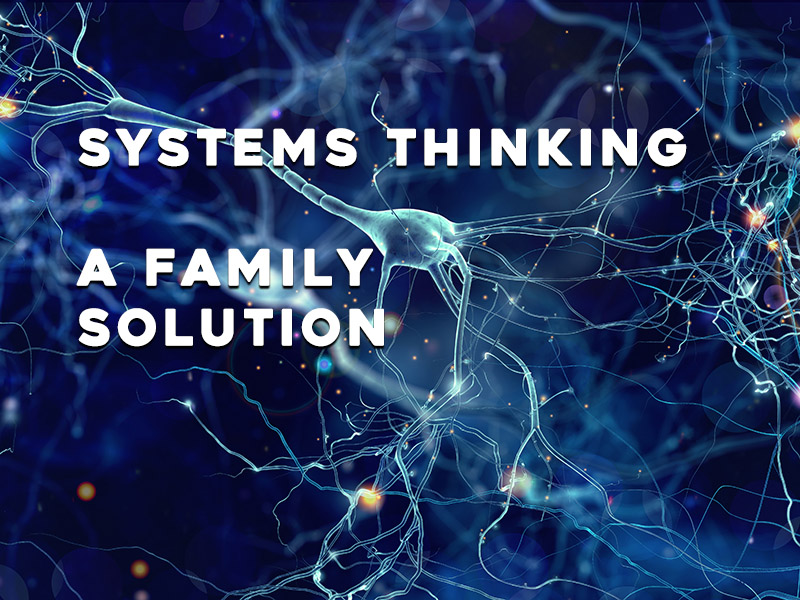 Systems Thinking can be a family solution
